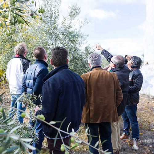 Journalisten en Topchefs op bezoek bij Valderrama in Spanje